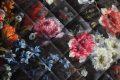Pearl-Schabracken-Manufaktur-Friese-Flower-Dressur-Prunk-Barock-Antik-Samt-Blumen-Barocke-Schabracke-dunkelrot-2-scaled-e1605613196601