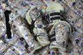 Pearl-Schabracken-Manufaktur-Dressurschabracke-Schabracke-Hologramm-Holofolie-Rose-Blumen-Tunier-Reiten-Pferd-Warmblut-Gamaschen-Dressurgamaschen-4-scaled-e1605301337516