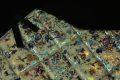 Pearl-Schabracke-Manufaktur-Dressurschabracke-Schabracken-Hologramm-Holofolie-Nude-beige-Tunier-Reiten-Dressur-Springen-Springschabracke-Reitsport-Cob-3-scaled-e1609410926197