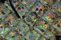 Pearl-Schabracke-Manufaktur-Dressurschabracke-Schabracken-Hologramm-Holofolie-Nude-Beige-Tunier-Reiten-Dressur-Vielseitigkeit-Reitsport-VS-3-scaled-e1609410899912